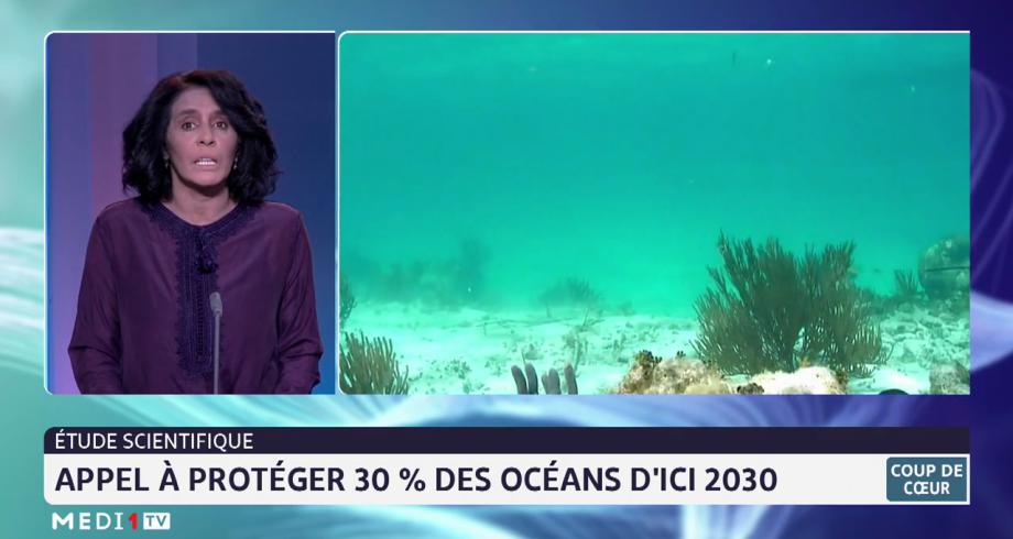 Étude scientifique: appel à protéger 30% des océans d'ici 2030