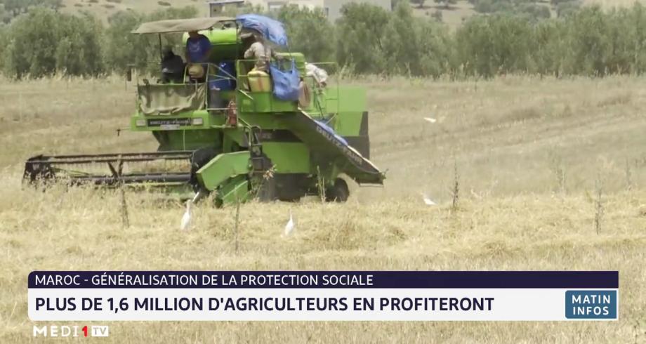 Généralisation de la protection sociale au Maroc: plus de 1,6 millions d'agriculteurs vont en profiter