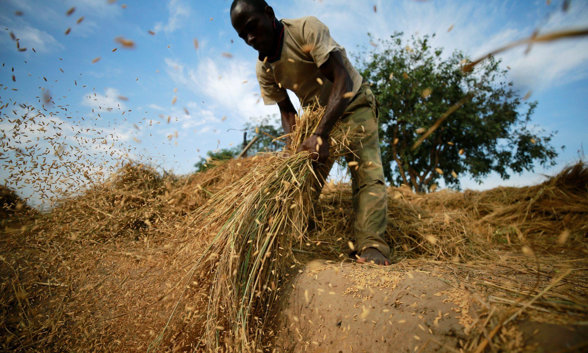 انعدام الأمن الغذائي يتهدد سكان الساحل والقرن الإفريقي