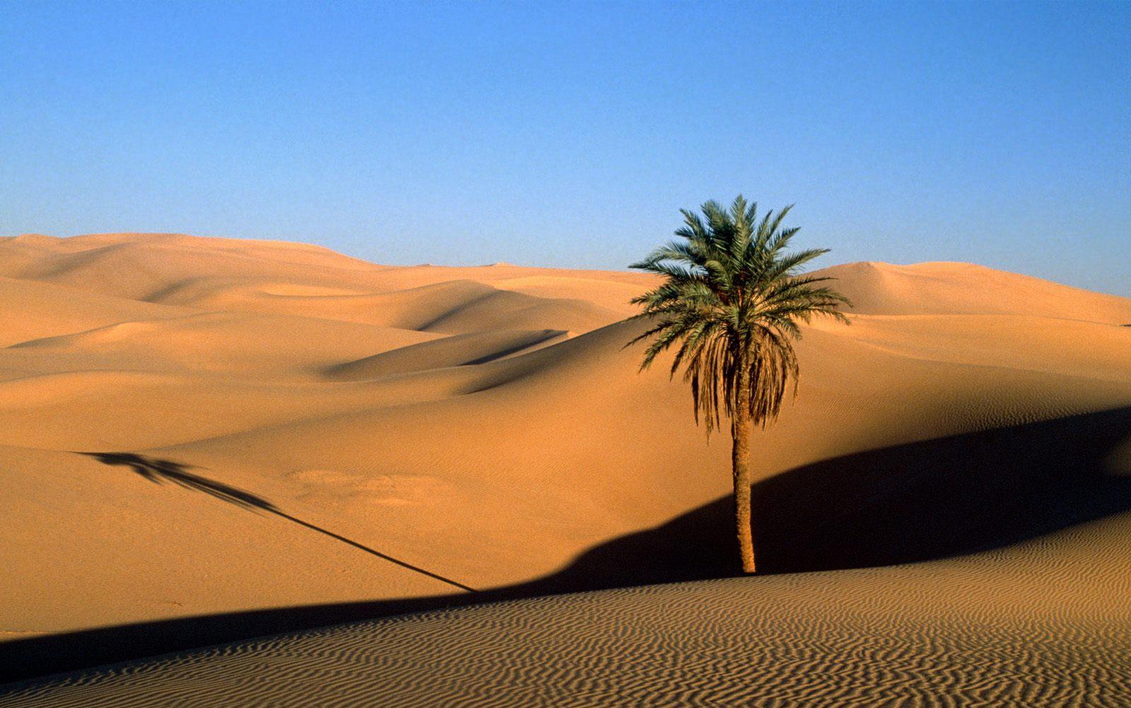 رمضان في الأقاليم الصحراوية..مائدة الإفطار وأجواء السمر الليلي