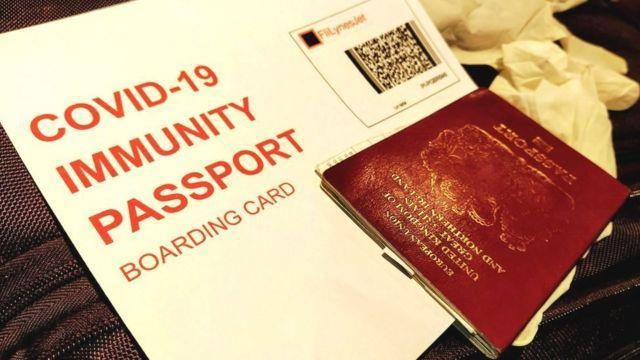 """Covid-19 : La France premier pays de l'Union européenne à adopter un """"passeport sanitaire"""""""