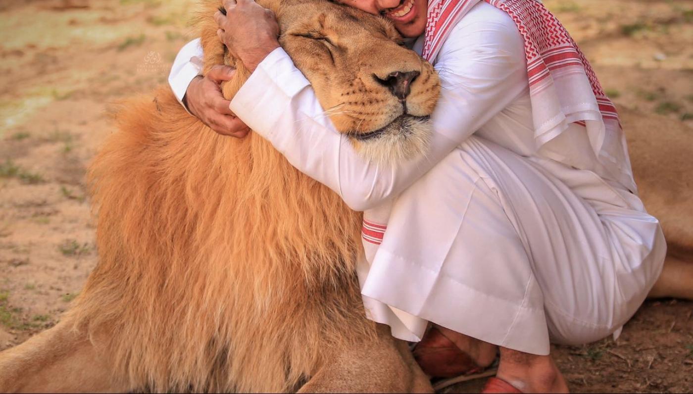 السلطات السعودية تدعو مالكي الحيوانات المفترسة إلى تسليمها فورا