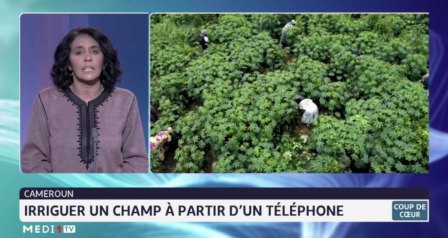 Cameroun: irriguer un champ à partir d'un téléphone