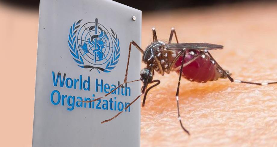 منظمة الصحة العالمية تريد القضاء على الملاريا في 25 بلدا إضافيا خلال 5 سنوات