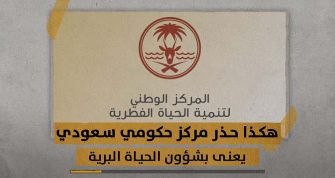زووم+ > بعد افتراس أسد لعشريني .. السعودية تجرم تربية الحيوانات المفترسة