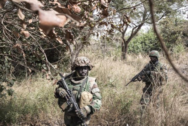 Sénégal : des individus armés ouvrent le feu sur des militaires en Casamance