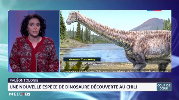 Paléontologie: une nouvelle espèce de dinosaure découverte au Chili