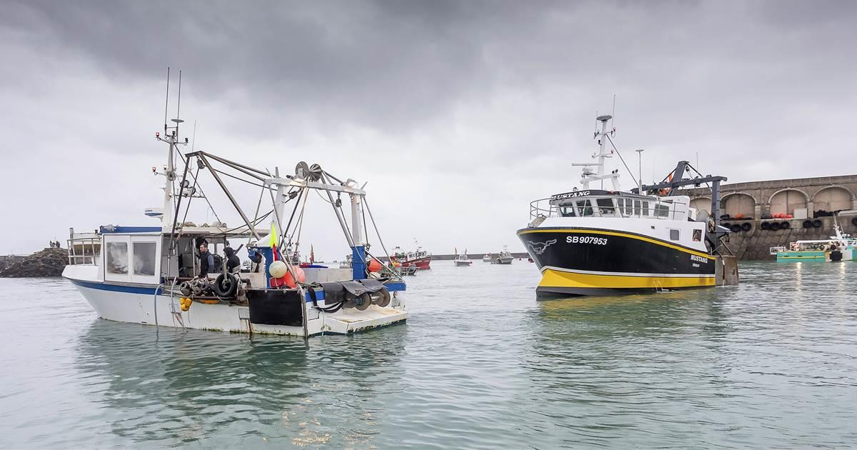 الصيد البحري.. ارتفاع قيمة المنتجات المسوقة بـ 34% إلى متم غشت الماضي