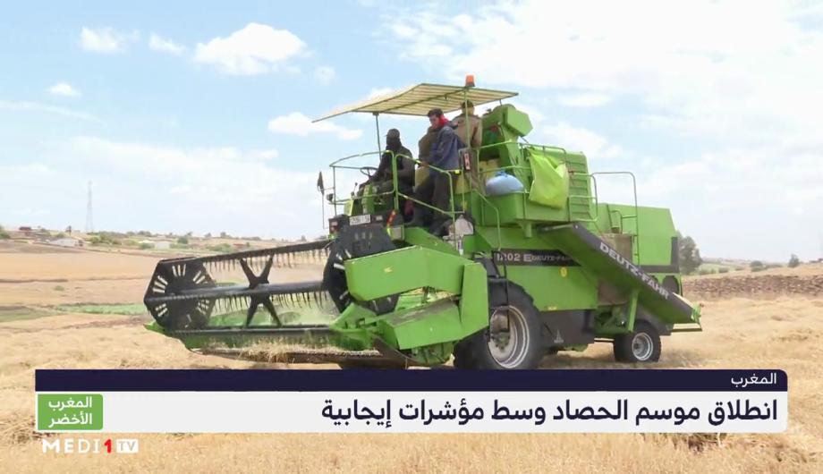 """""""المغرب الأخضر"""" .. انطلاق موسم الحصاد وسط مؤشرات إيجابية"""
