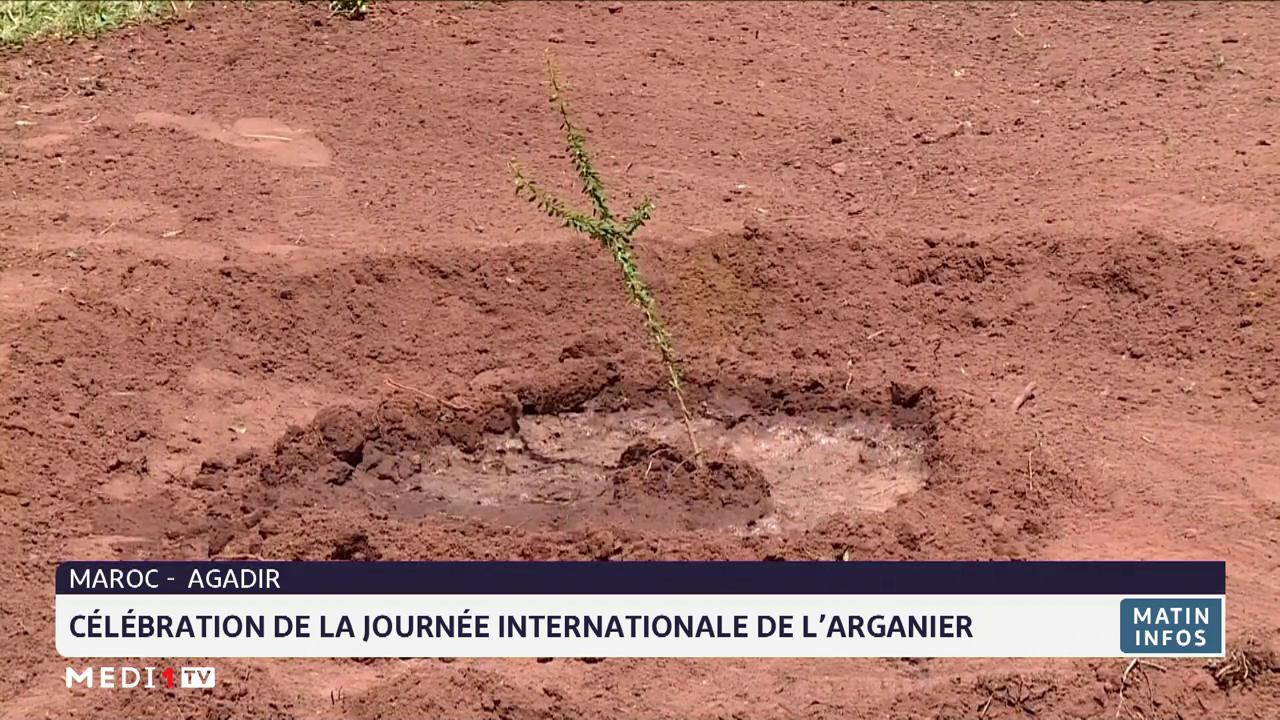 Maroc: célébration de la journée internationale de l'arganier