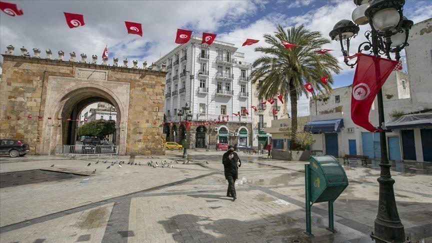 Trois foyers de contamination de la grippe équine détectés en Tunisie