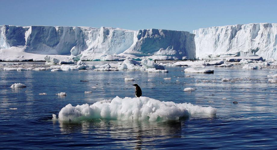 حرارة القطب الشمالي ارتفعت في نصف قرن ثلاث مرات أسرع من حرارة الأرض
