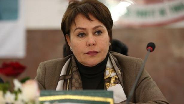 تعيين المغربية بشرى حجيج نائبة لرئيس اللجنة التنفيذية للاتحاد الدولي للكرة الطائرة
