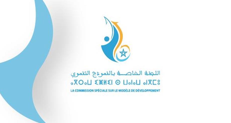 اللجنة الخاصة بالنموذج التنموي .. الأرقام الرئيسية للتقرير العام