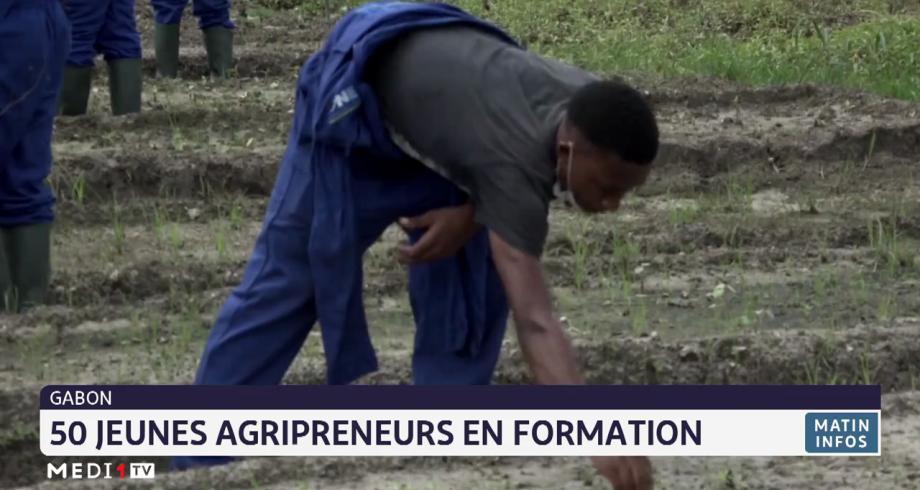 Gabon: 50 jeunes agri-preneurs en formation