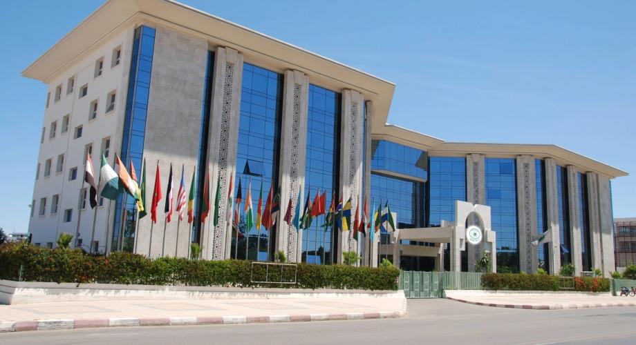 """""""إيسيسكو"""" تُنوه بقرار الملك محمد السادس تسهيل عودة القاصرين غير المرفوقين في بعض البلدان الأوربية"""