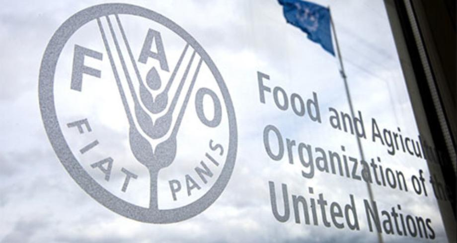 تفاقم تلوث التربة وانتشار النفايات يهددان مستقبل إنتاج الأغذية في العالم