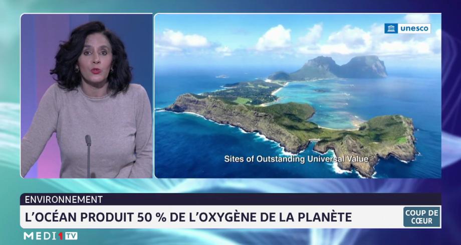 Coup de cœur: l'océan produit 50% de l'oxygène de la planète