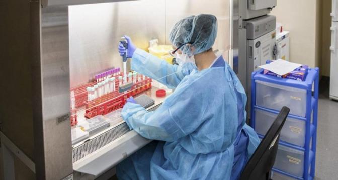 L'Argentine développe son propre vaccin contre le Covid, les essais précliniques imminents