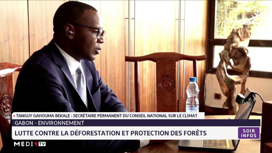 Gabon: Lutte contre la déforestation et protection des forêts