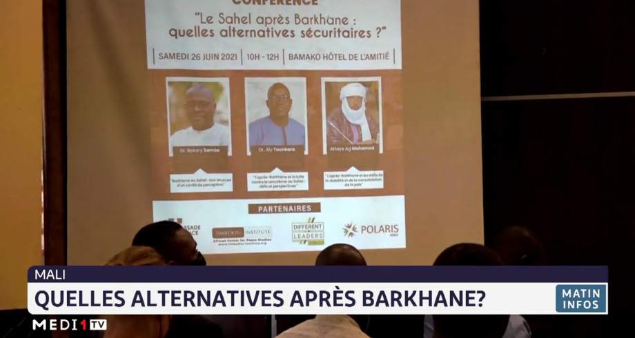 Mali: quelles alternatives après Barkhane?