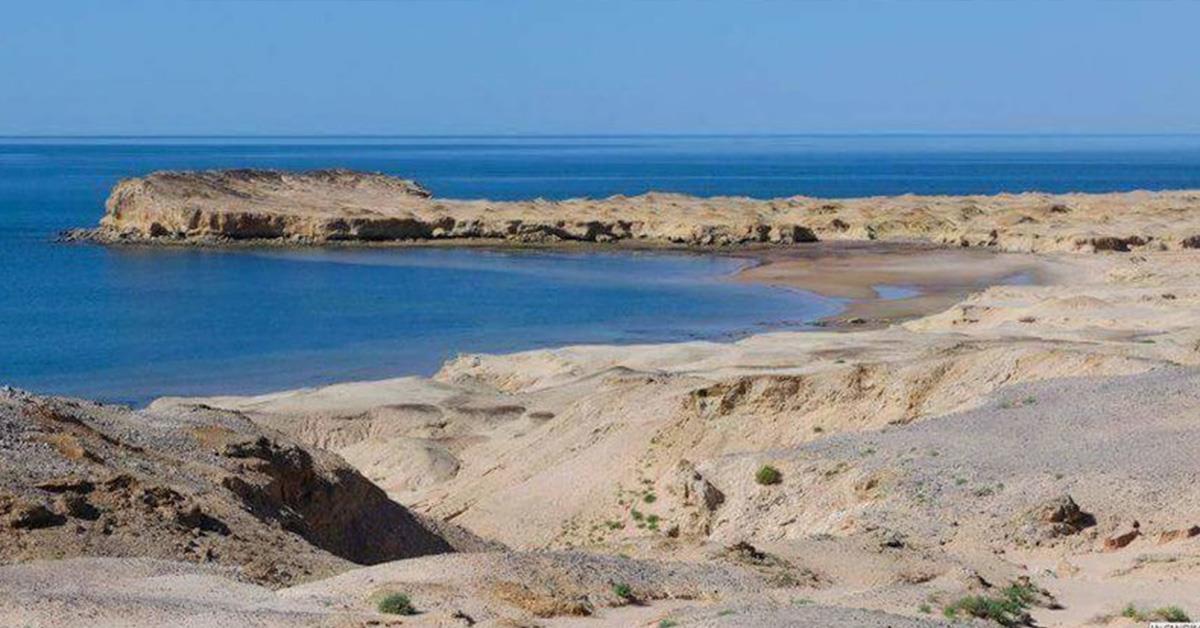 موريتانيا أمام كارثة بيئية مجهولة الأسباب تؤدي إلى غلق محمية حوض أرغين