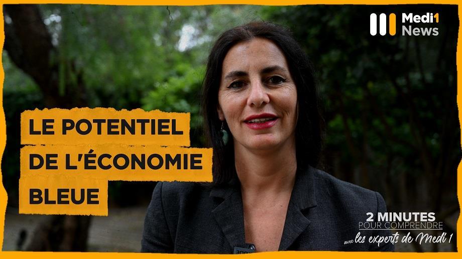 """""""Le potentiel de l'économie bleue"""" par Alessandra Sensi, responsable du département environnement à l'UpM"""