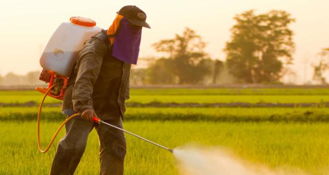INSERM: liens de causalité établis entre pesticides et maladies graves, dont certains cancers