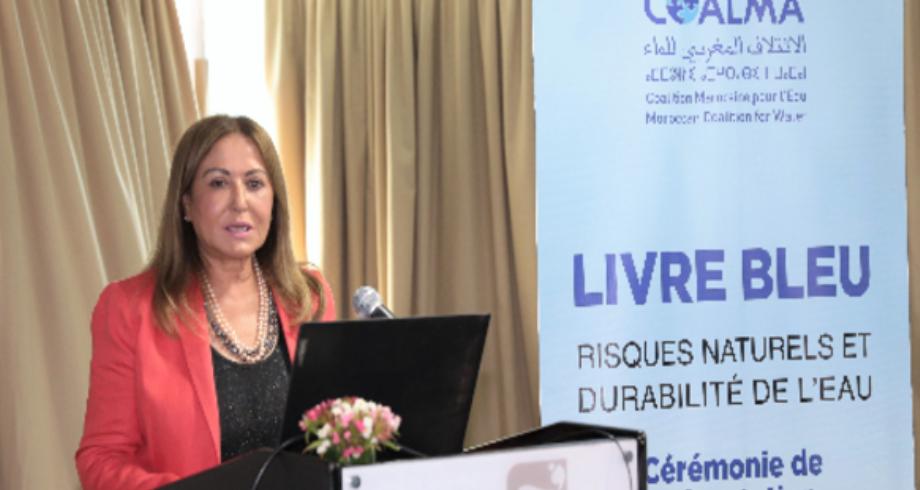"""رئيس اللجنة التحضيرية للمنتدى العالمي للماء: """"الكتاب الأزرق"""" الذي أعده الائتلاف المغربي للماء مرجع للبلدان التي تواجه أزمة المياه"""