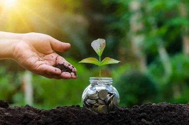 صندوق المناخ الأخضر .. 500 مليون دولار لتمويل مشاريع جديدة لمكافحة التغير المناخي