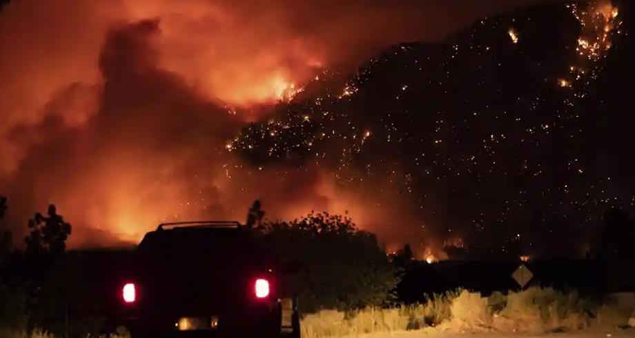 حرائق الغابات بتونس ..ارتفاع المساحات المحترقة بنسبة 322 في المئة