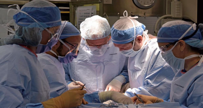 السلطات الفرنسية تسمح بوهب الأعضاء ما بين الأشخاص المصابين بفيروس نقص المناعة المكتسبة