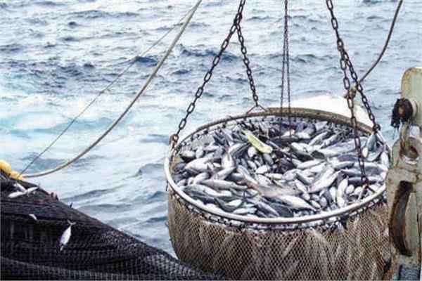 المغرب يؤكد حرصه على نجاح المفاوضات بشأن إعانات مصايد الأسماك في الموعد المحدد