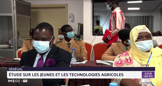 Sénégal: étude sur les jeunes et les technologies agricoles