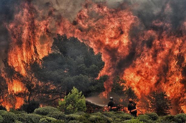 اليونان .. حرائق الغابات تأتي على عشرات المنازل