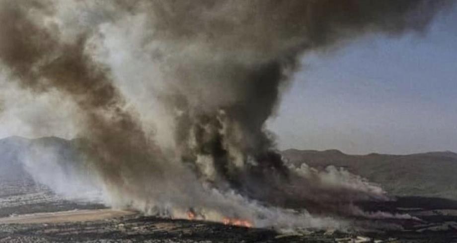 Grèce: les pompiers espèrent maîtriser un feu important près d'Athènes