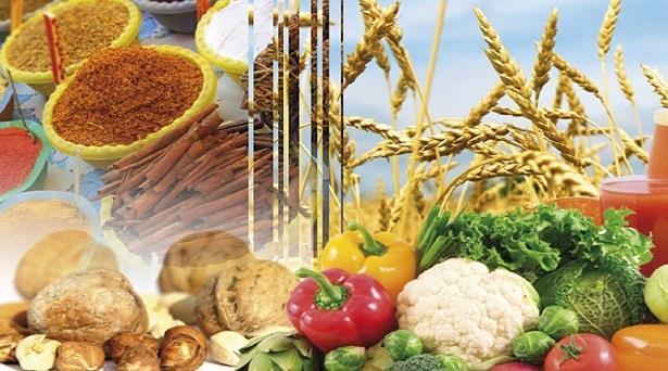 وزارة الفلاحة: أداء جيد لقطاع تصدير المنتجات الغذائية الفلاحية خلال 2021