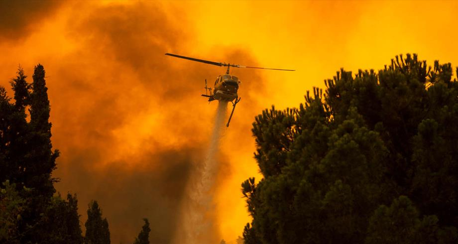 اليونان .. الحرائق تجتاح جزيرة إيفيا مجددا