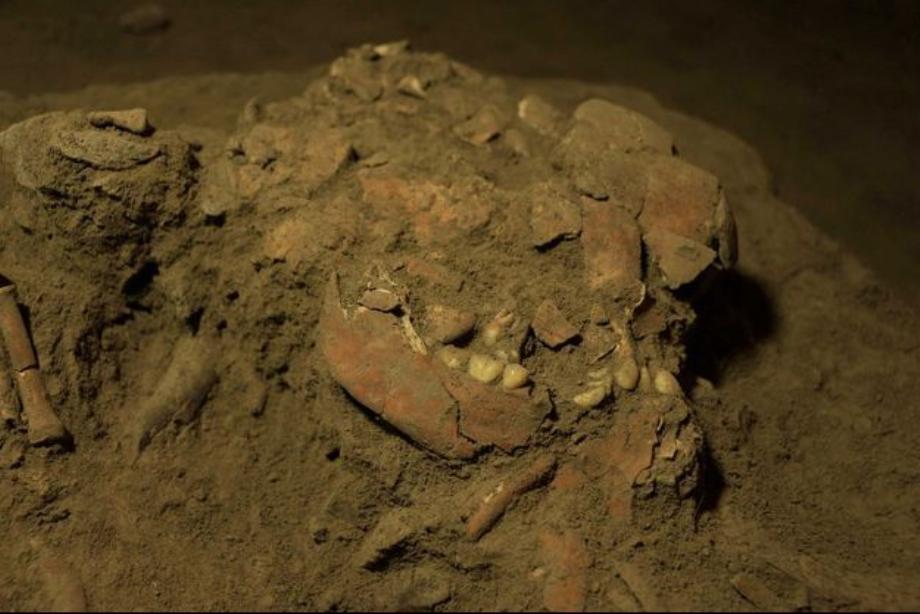 Indonésie: un squelette vieux de 7.200 ans révèle un groupe humain encore inconnu