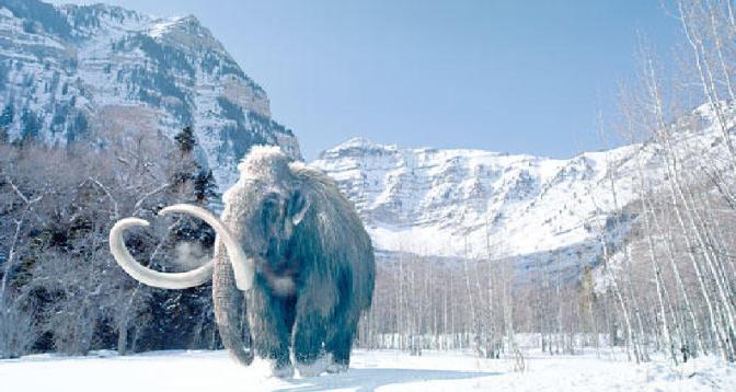 شركة أمريكية تسعى لإعادة حيوانات ماموث منقرضة منذ أربعة آلاف سنة