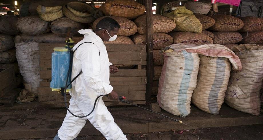 Résurgence de la peste pulmonaire à Madagascar: 7 morts dans la capitale