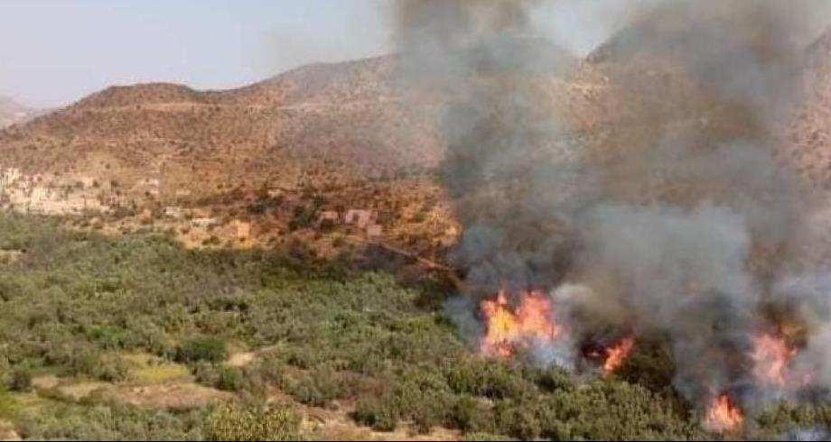 """Chtouka-Ait Baha: L'incendie de """"l'oasis de Targa"""" totalement maîtrisé"""