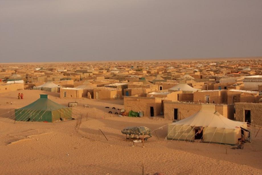 Camps de Tindouf: les violations caractérisées des droits de l'homme par le polisario dénoncées devant la 4è Commission de l'AG de l'ONU