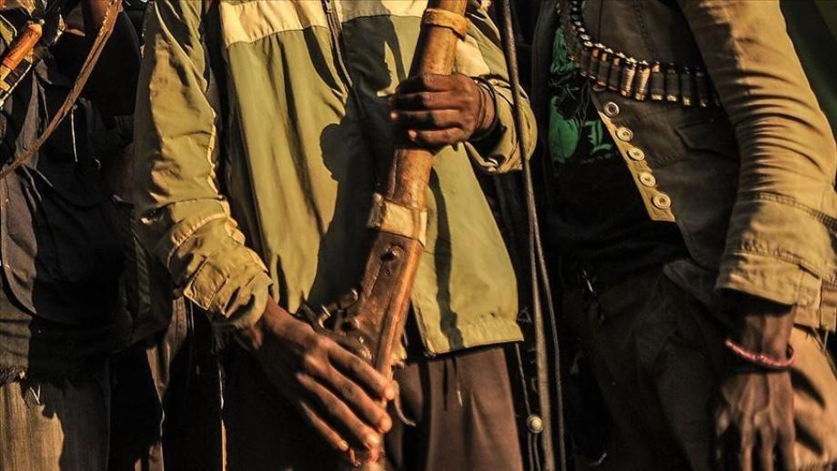 Cameroun: deux membres de Boko Haram tués dans une embuscade