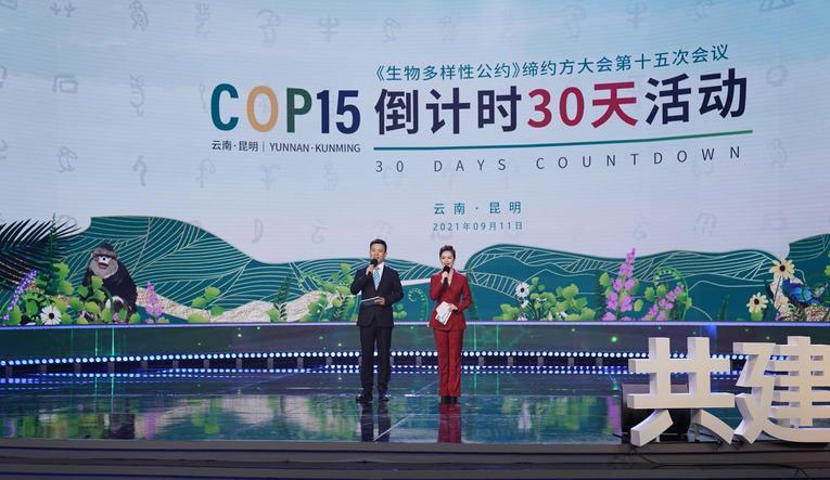 Biodiversité: Coup d'envoi de la COP15 en Chine