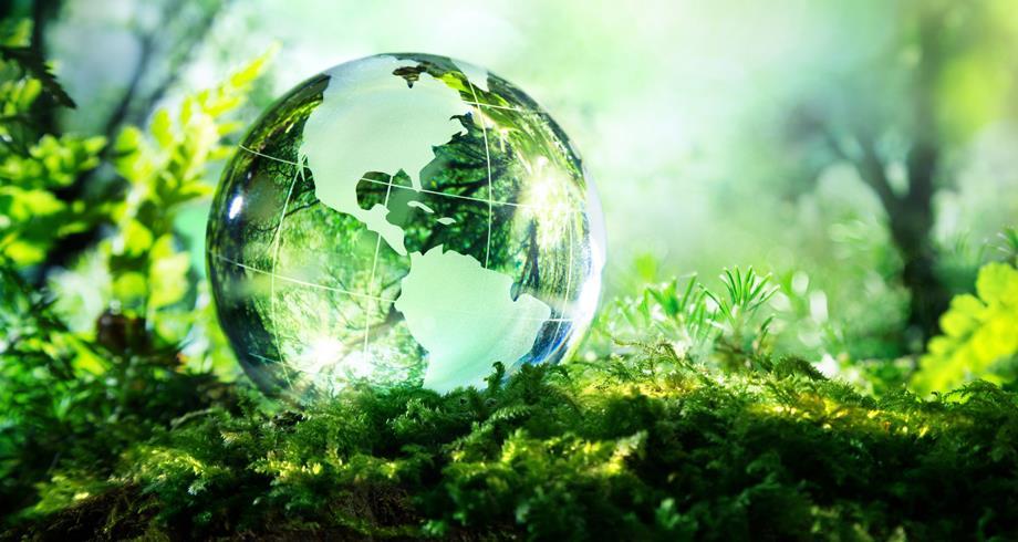 مسؤولون أمميون يدعون إلى اتخاذ إجراءات جريئة للحفاظ على التنوع البيولوجي العالمي