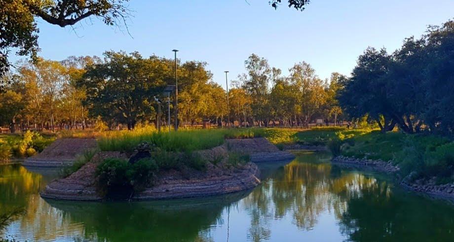 القنيطرة .. مديرية المياه والغابات تنفي بناء تجزئات سكنية بالعقار الغابوي معمورة