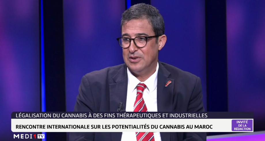 Légalisations du cannabis au Maroc: rencontre internationale sur les potentialités du cannabis