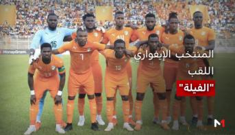 """الطريق إلى مصر > """"الفيلة"""" يحملون حلم الإيفواريين في مشاركتهم الـ 23 بكأس افريقيا للأمم"""