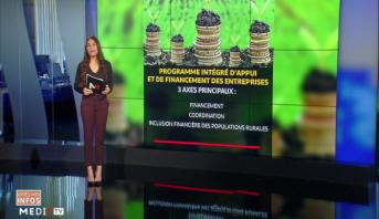 Programme intégré d'appui aux entreprises: boosteur de l'économie marocaine